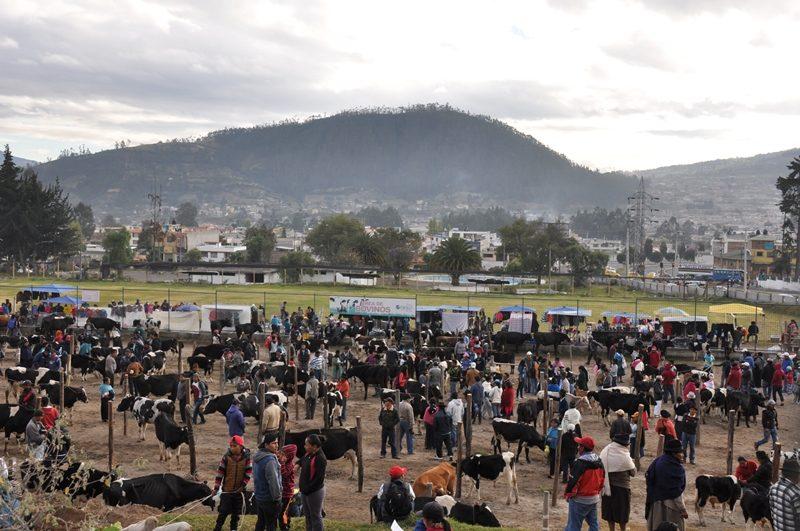 Markedsdag i Otavalo i Ecuador