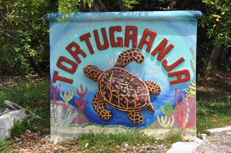 Skildpaddecenteret Tortugranja