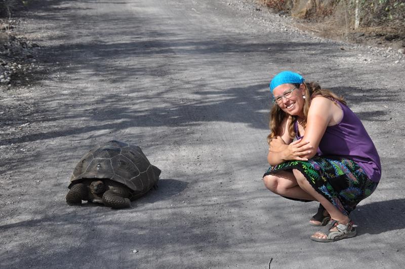 Første møde med en landskildpadde