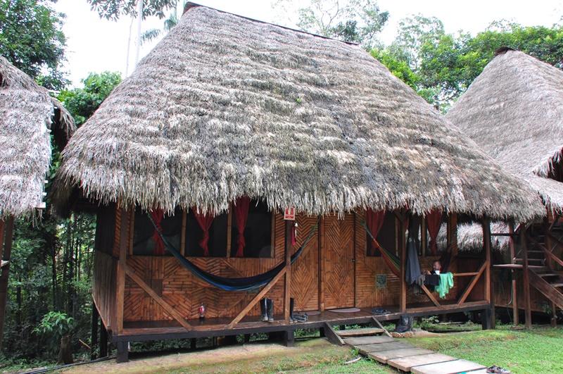 Vores hytte i Caiman Lodge i Cuyabeno