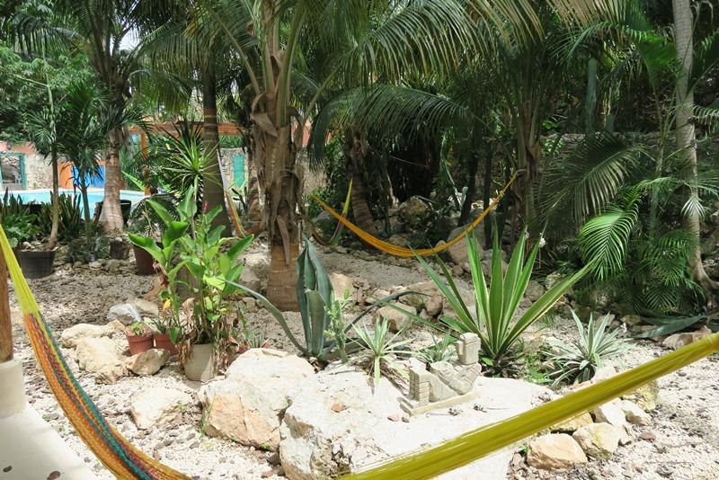 Hængekøjer på hostlet Nomadas i Merida, Mexico
