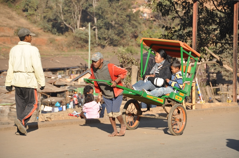 Taxa i Madagaskar