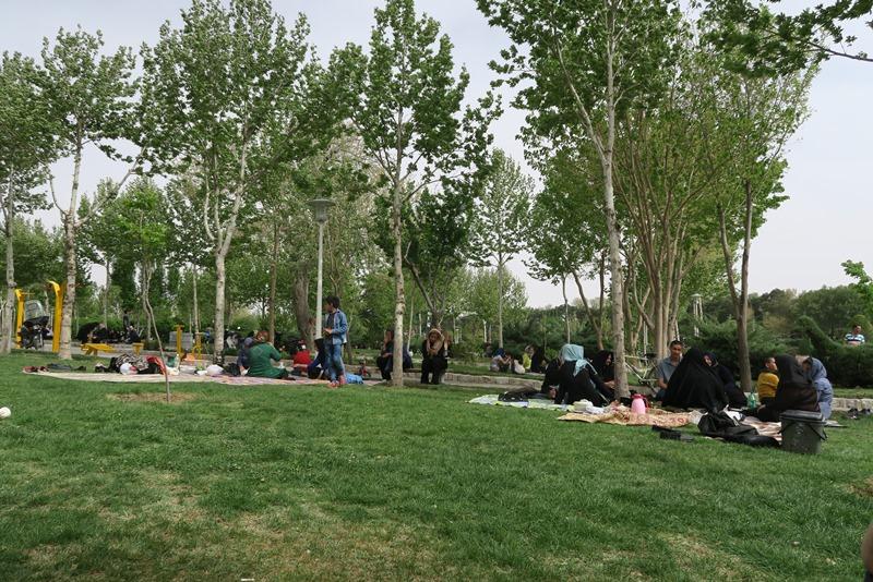 På picnic som iranere