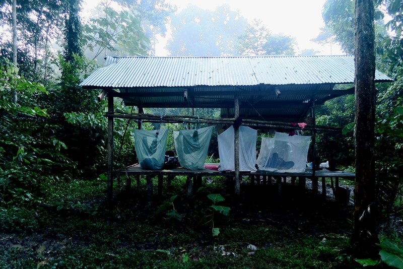 Vores junglehytte i Amazonas, Colombia