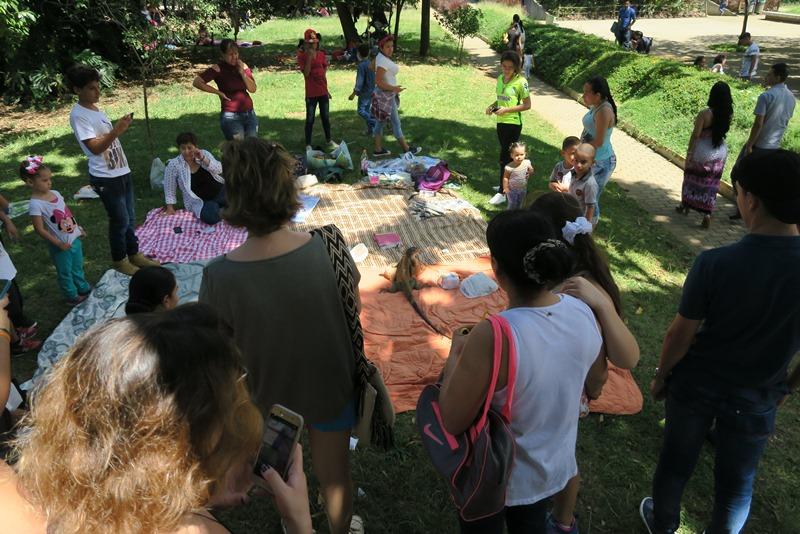 Leguan har indtaget tæppe i den botaniske have i Medellin