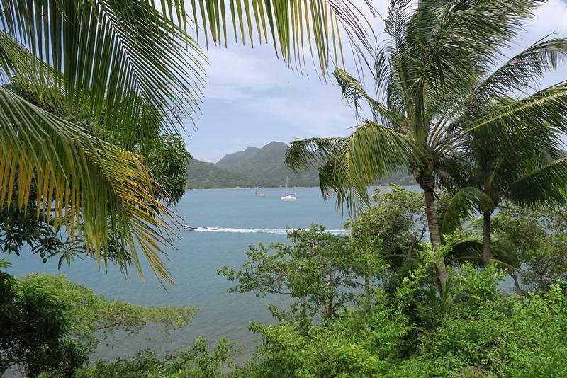 Smukke caribien