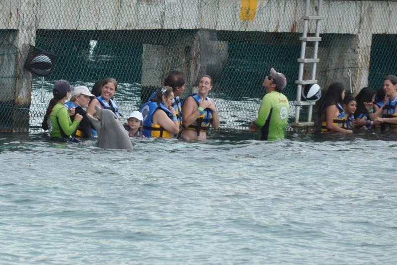 Delfiner, Mexico