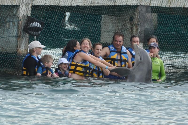 Delfiner, Isla Mujeres, Mexico