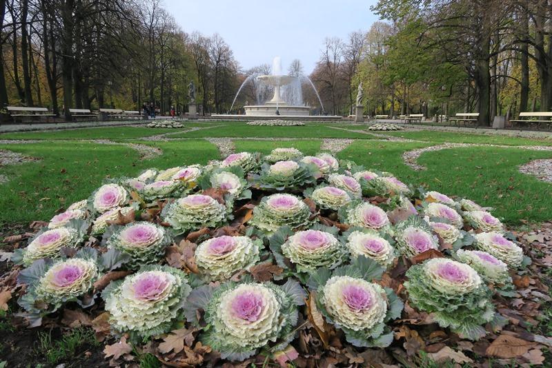 Den Saxiske have, Warszawa
