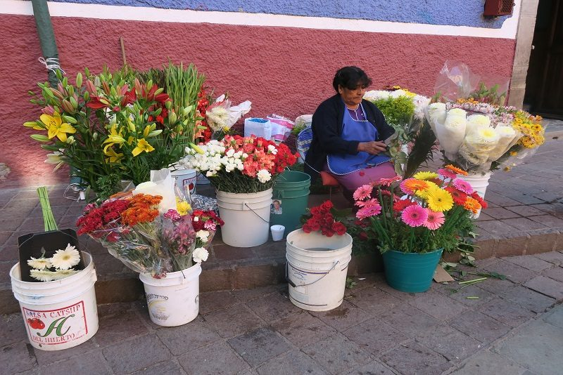 Blomster på torvet, Guanajuato, Mexico