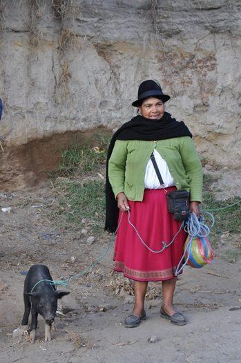 Otavalo marked6