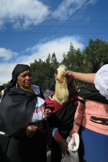 Otavalo marked
