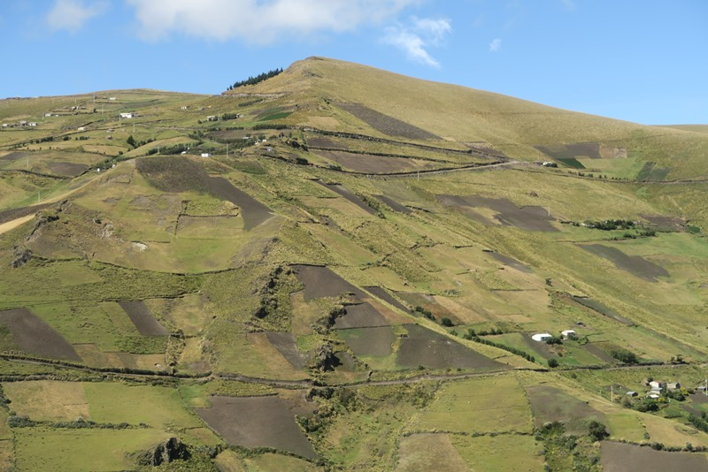 Andesbjergene