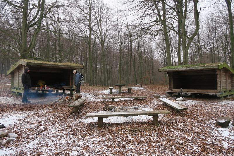 sheltere ved møns klint