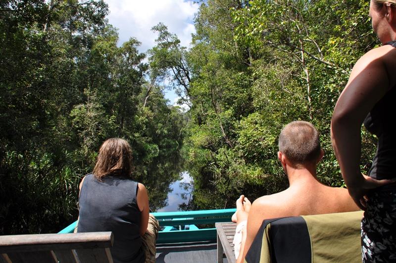 Vi nyder udsigten og dyrene langs floden
