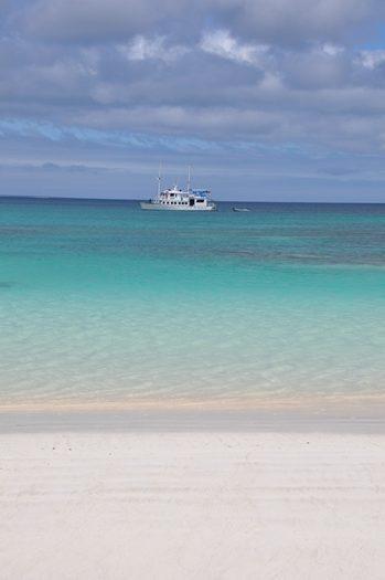 golondrina-Galapagos-cruise