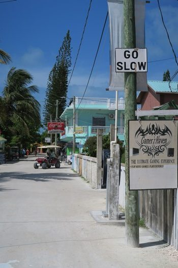 Caye Caulkers motto Go slow