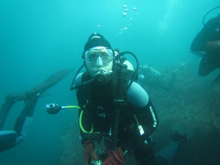 Dykning med hammerhajer, Galapagos