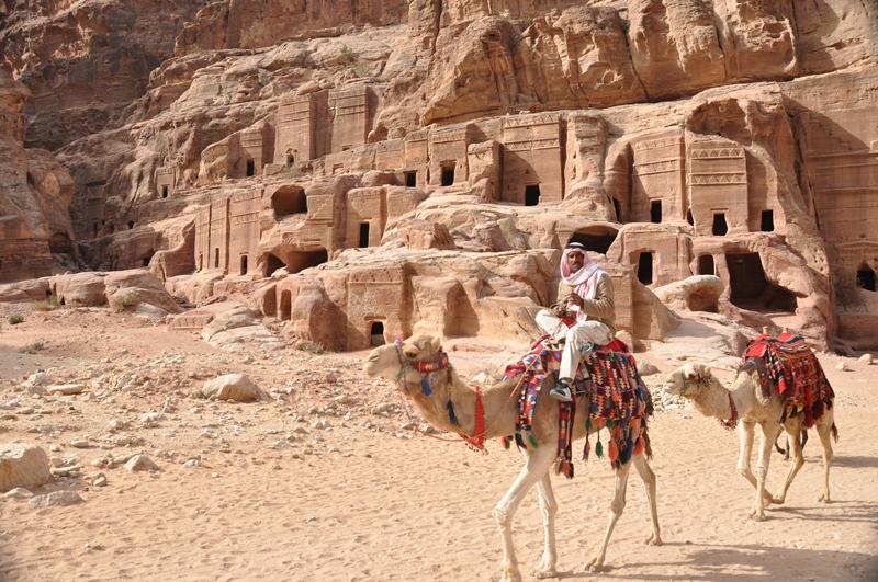 Kameler foran gamle grave i Petra i Jordan