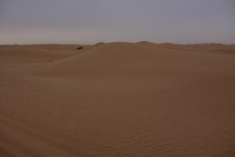 Smukt ørkenlandskab
