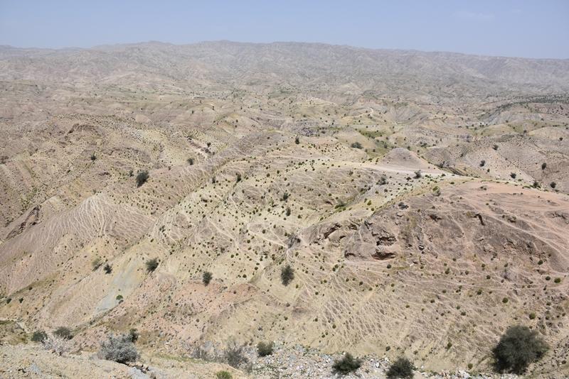 Qashqaibjergene