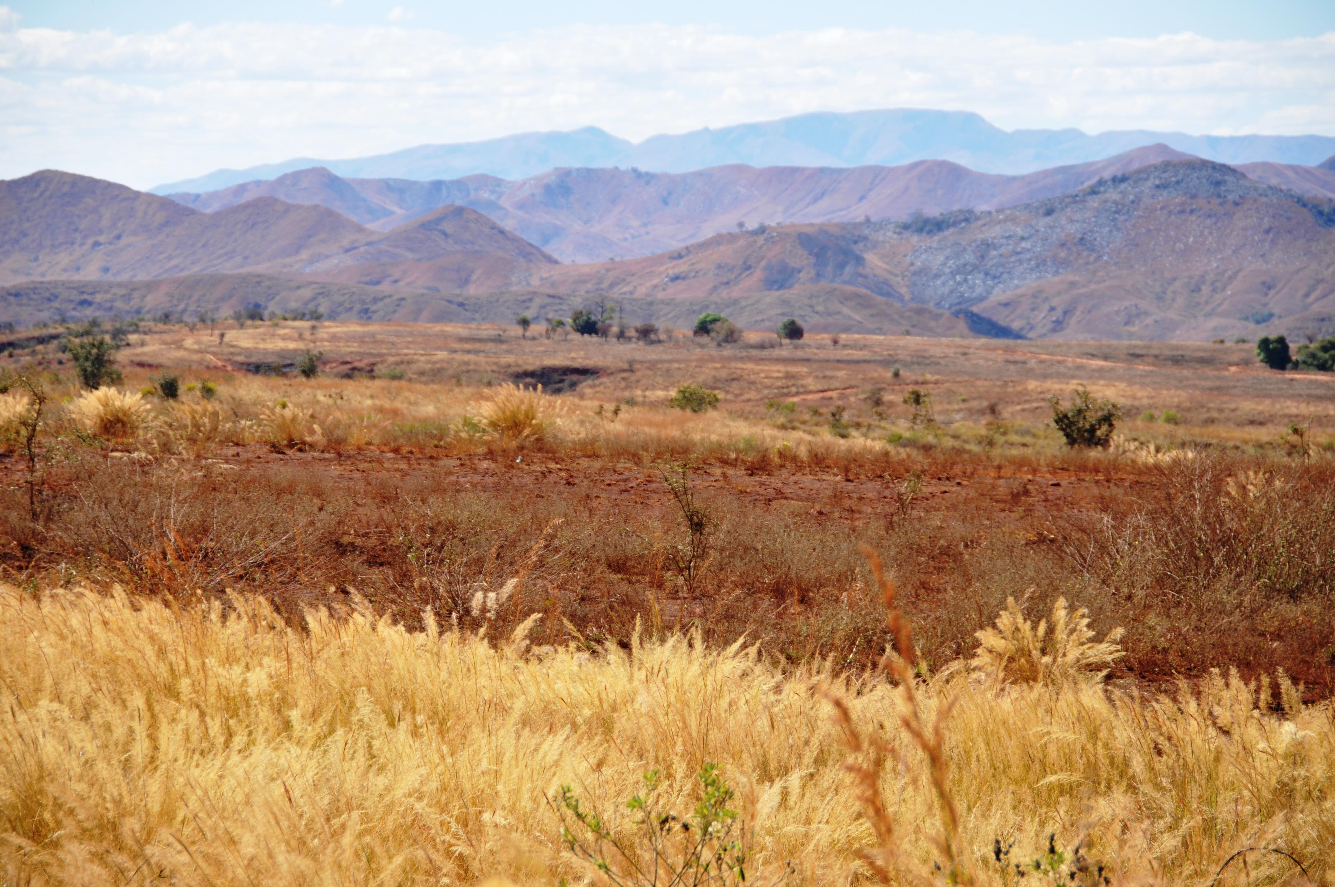 Roadtrip gennem smukke Madagaskar