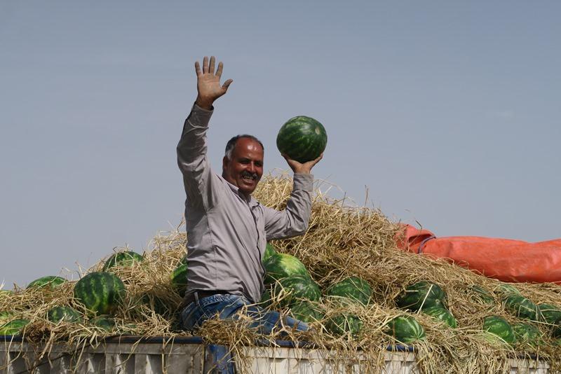 Der sælges vandmeloner langs vejen