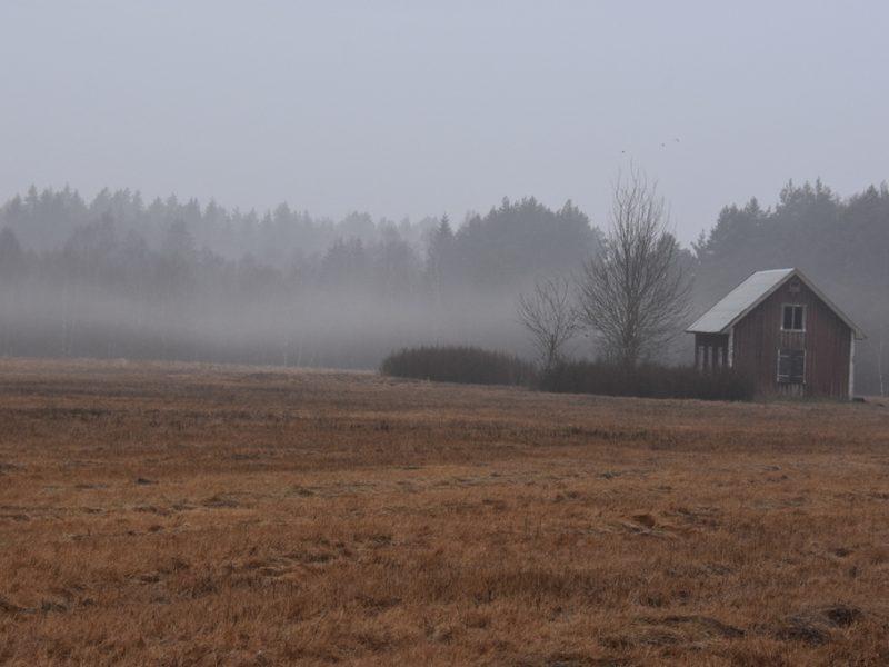 Forladt hus i Sverige