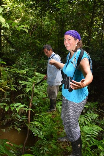 Over en junglebro i Amazonas