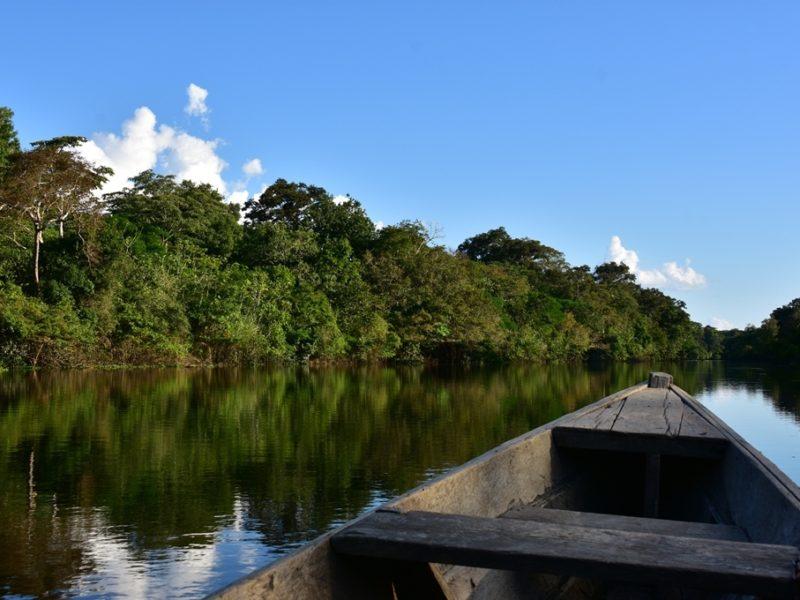 Med båd i Amazonas