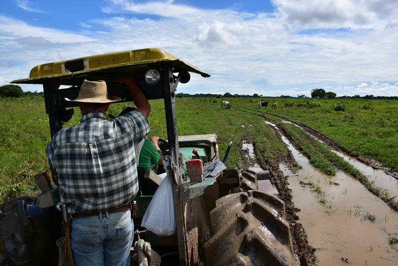 Trakortur rundt i Los Llanos, Colombia