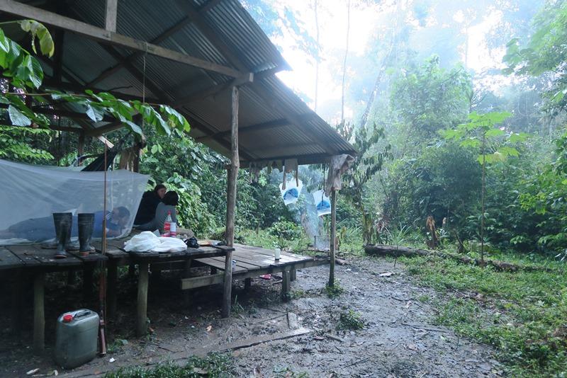 Vores junglehytte i Amazonas, Colombiia