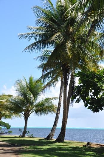Smukke Yap, Mikronesien