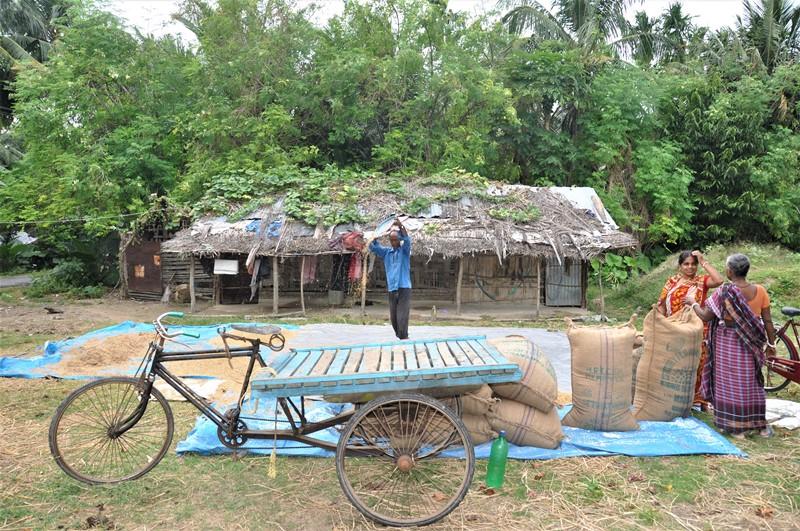 Markarbejdere på Neil Island, Andamanerne