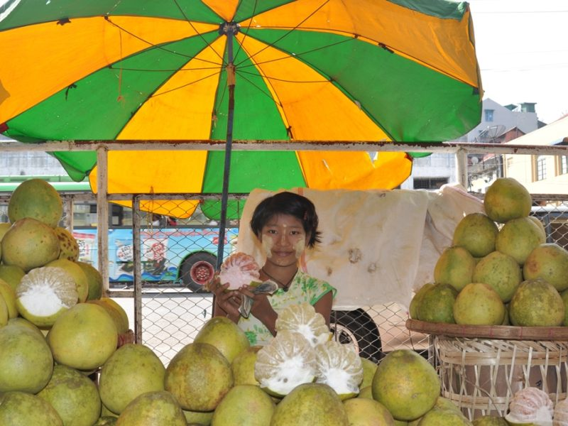 Tur på markedet i Yangon