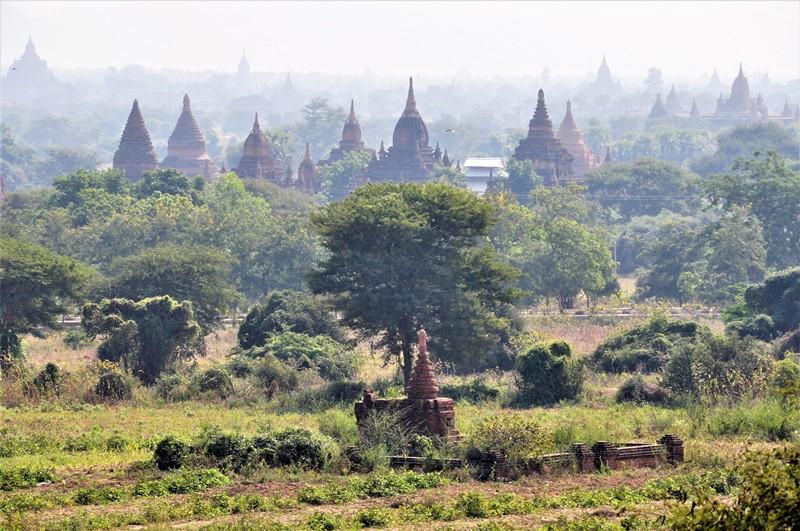 Masser af templer så langt øjet rækker, Bagan, Myanmar