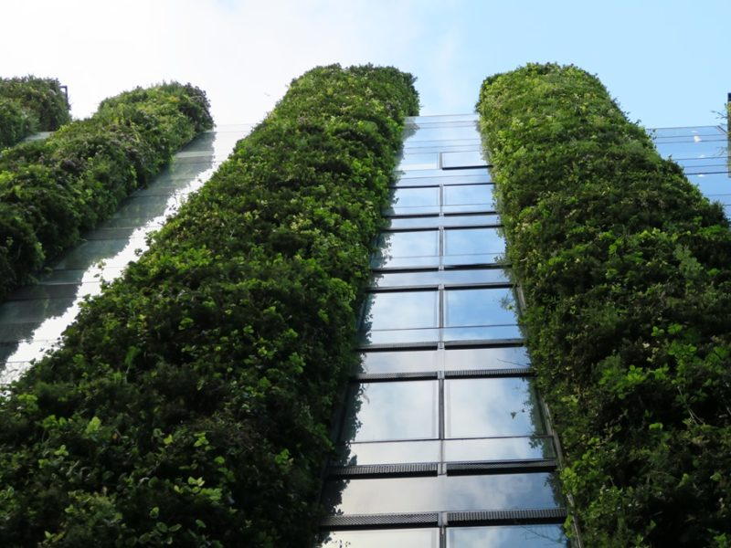 De vertikale haver i Bogotá, Colombia