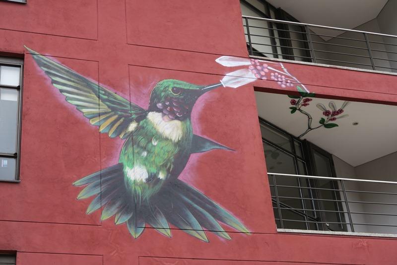 Colibri, Bogota, Colombia