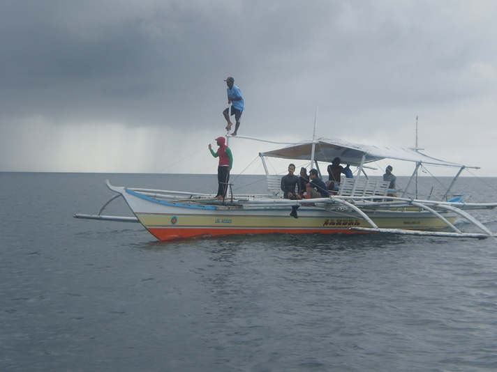 Der kigges efter hvalhajer, Donsol, Filippinerne