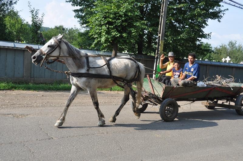Glade folk i hestevogn, Østeuropa