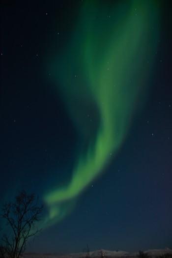 Nordlys nær Tromsø, Norge