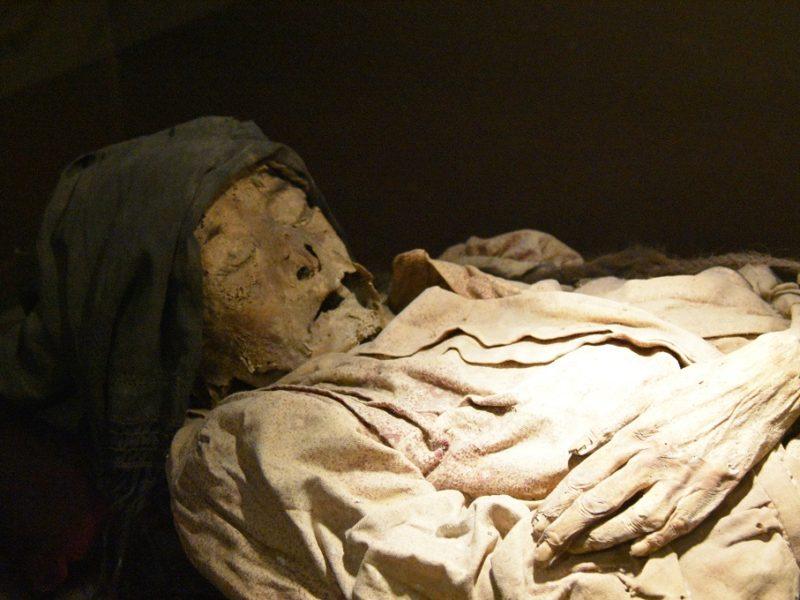 Mumier på museum, Guanajuato, Mexico