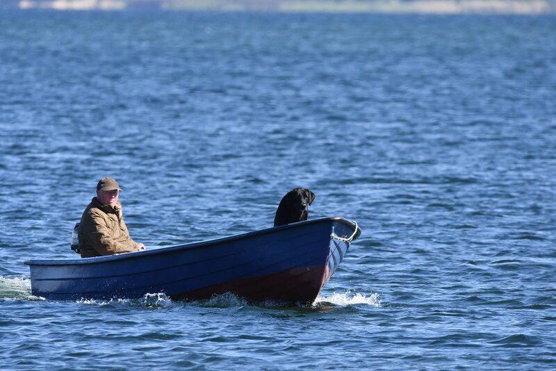 Fra havnen på Askø