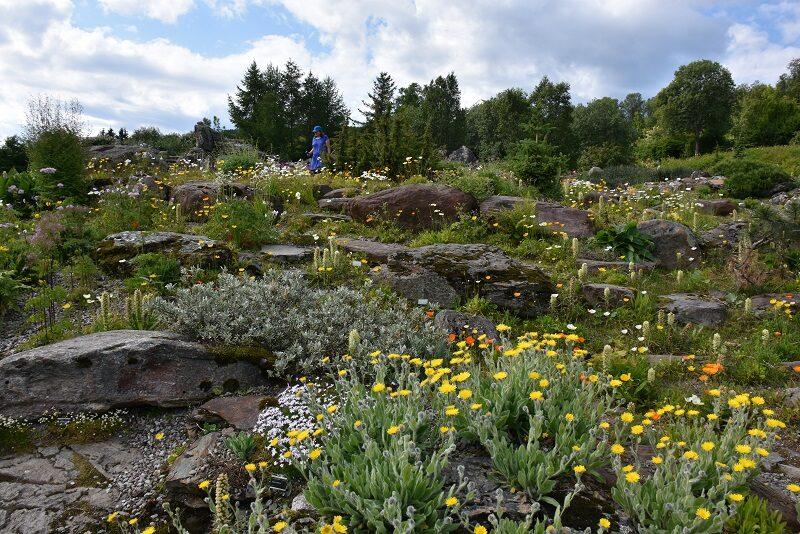 Verdens nordligste botaniske have