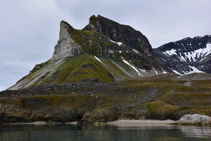 Fuglefjeld på Svalbard