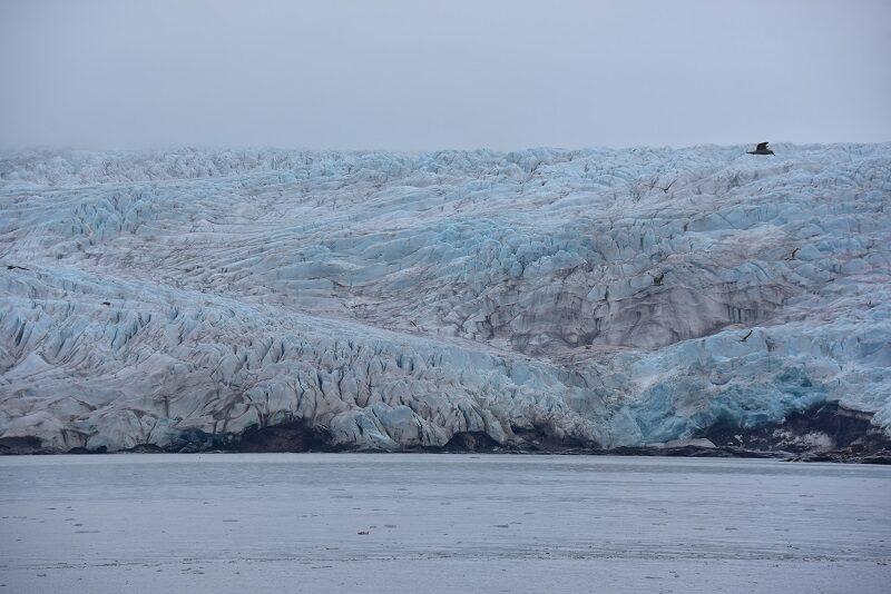Nordenskjöld gletscher, Svalbard