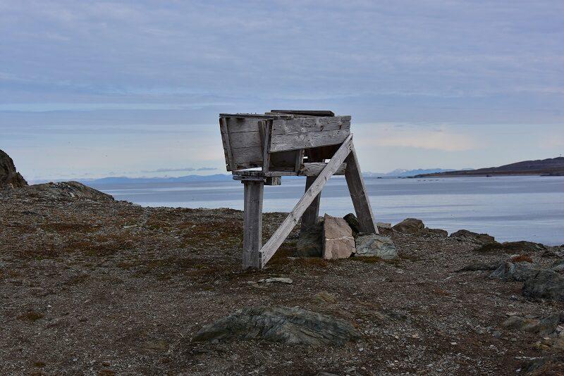 Isbjørnefælde på Isfjord Radio