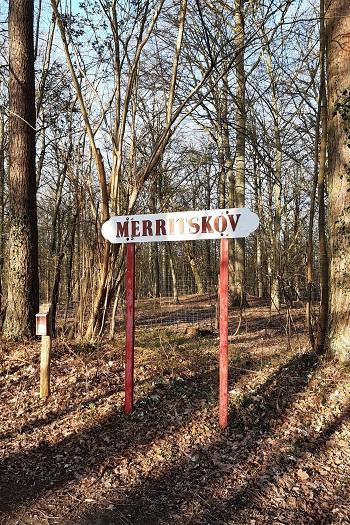 Merritskov på Lolland